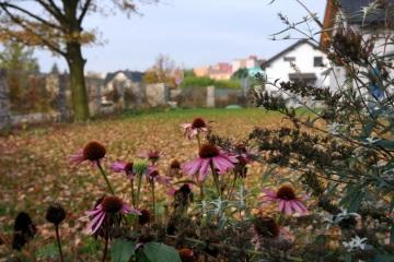 Rodinné zahrady - Ostrava - Stará Bělá