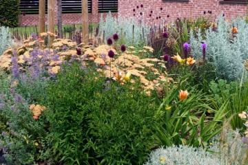 Rodinné zahrady - Paskov