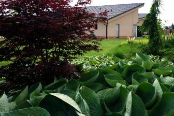 Rodinné zahrady - Pstruží
