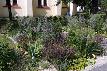 Veřejná zeleň - Charita Bohumín