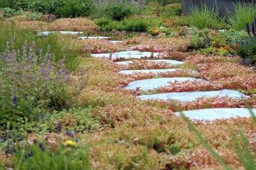 Střešní zahrady - Palkovice